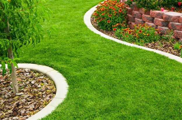 garden landscaping and edging